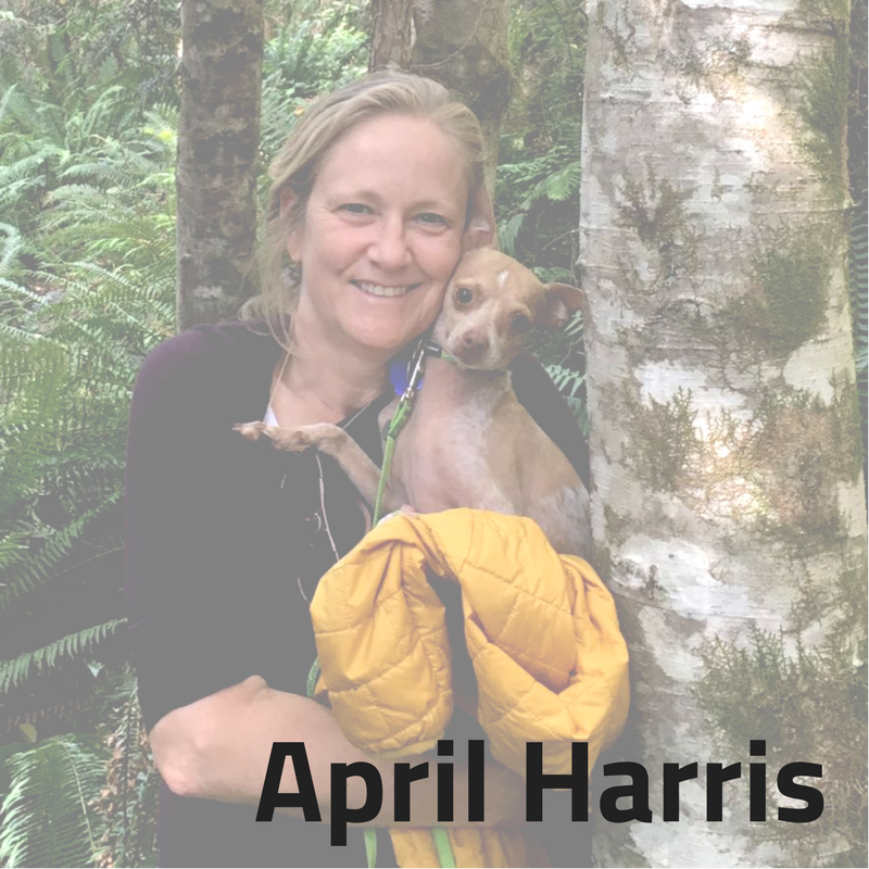 Idealist Consulting Consultant April Harris